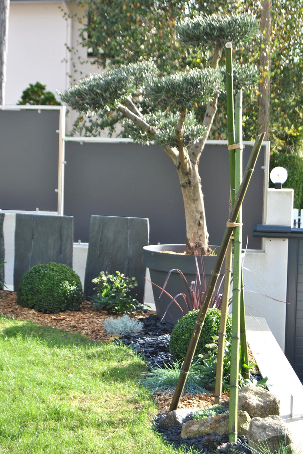 Plantes De Terrasse Arbustes aménagement extérieur et décoration de terrasse
